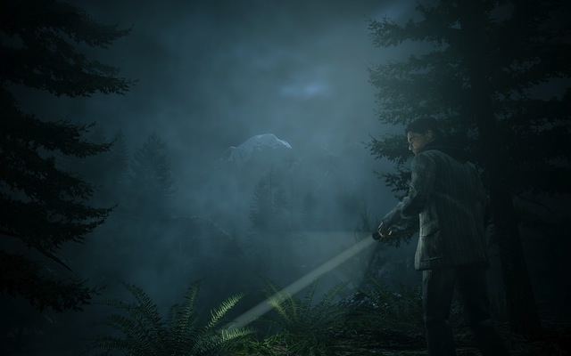 Alan Wake PC - Searching