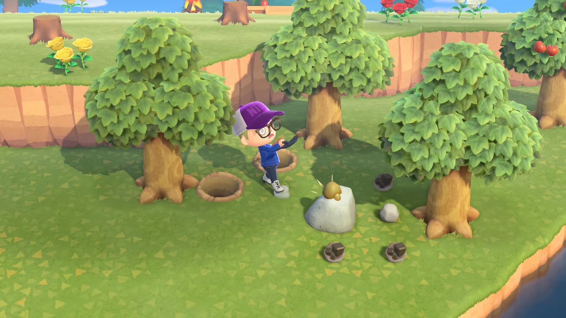 Animal Crossing New Horizons beginners guide rocks