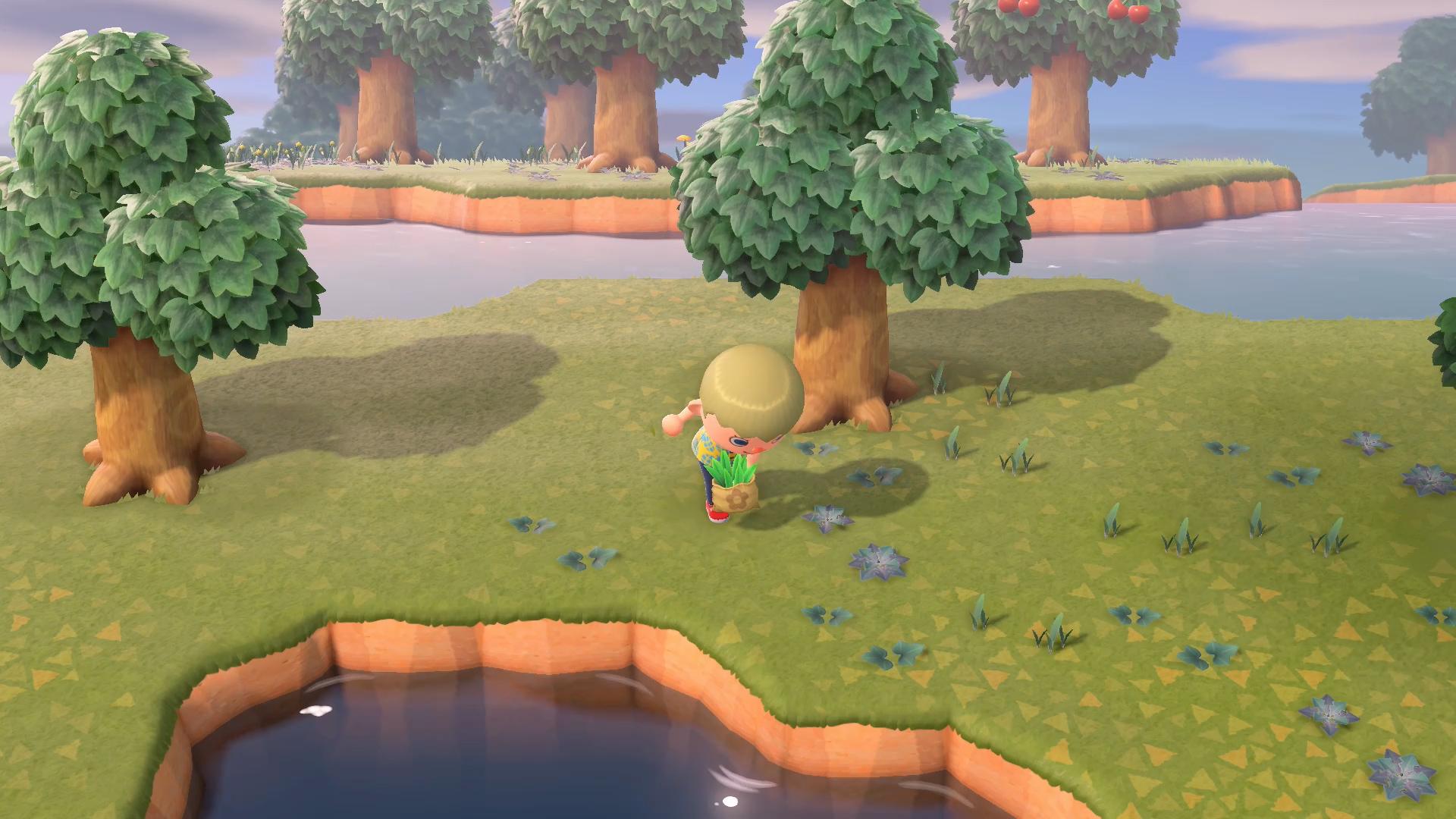 Animal Crossing New Horizons beginners guide weeds