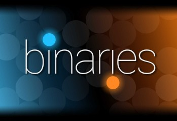 Binaries review