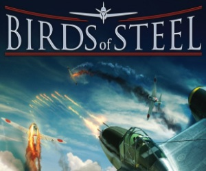 Birds of Steel Video Review