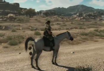D-Horse pooping