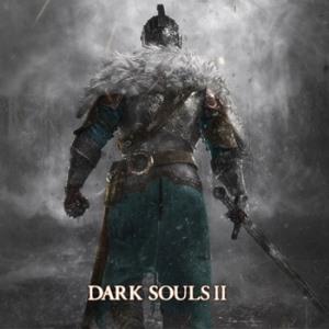 Thirteen Beginner's Tips For Surviving Dark Souls 2