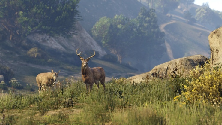 GTA V ps4 animals