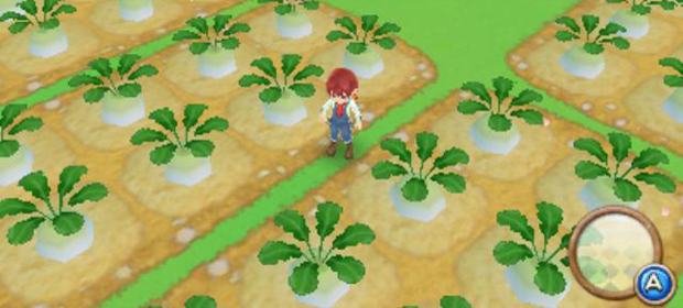 Harvest Moon A New Beginning featured