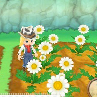 Harvest Moon European Release Date Announced