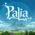 Singularity 6 announce Palia, an MMO multiplayer community sim