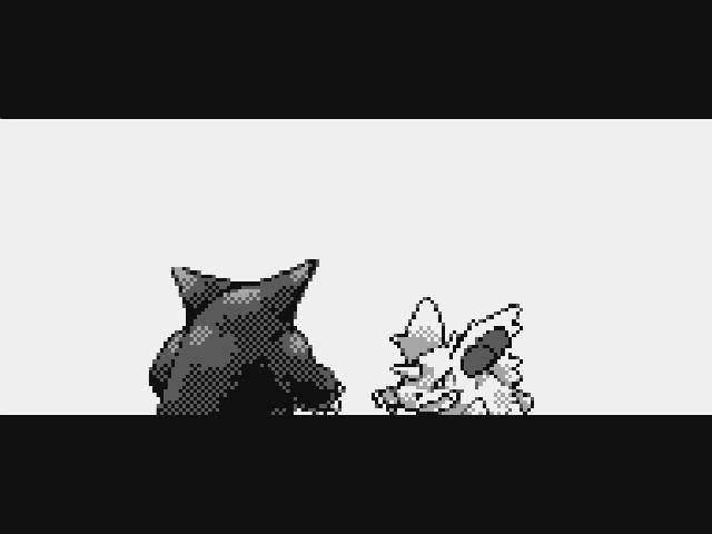 Pokemon Battle Screen