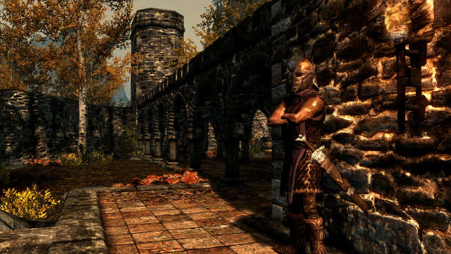 Skyrim - Riften Guard