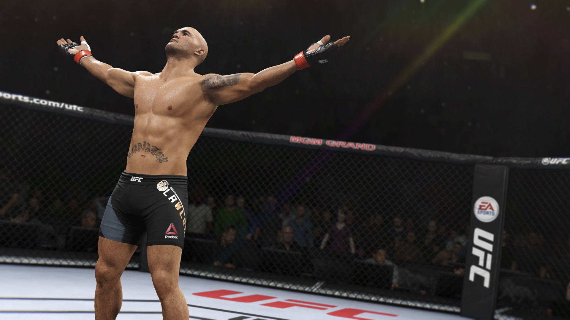 9 Tips for Victory in UFC 2