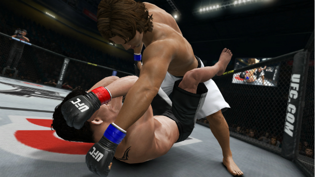 UFC Undisputed 3 - Face Punch