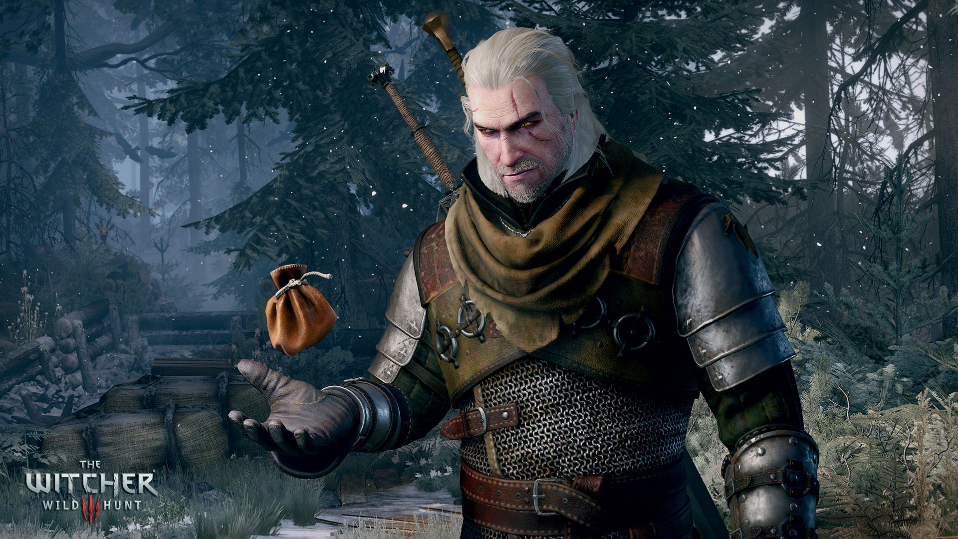 The_Witcher_3_Wild_Hunt_Getting_paid-best_part_of_the_job